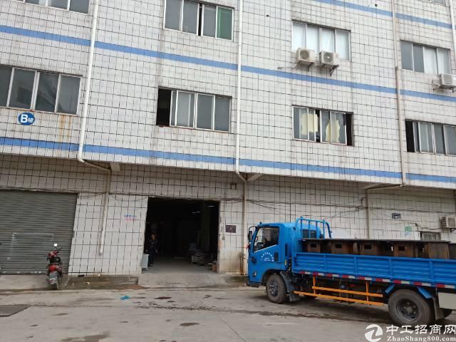 樟木头镇石新管理区标准厂房三楼880平方出租