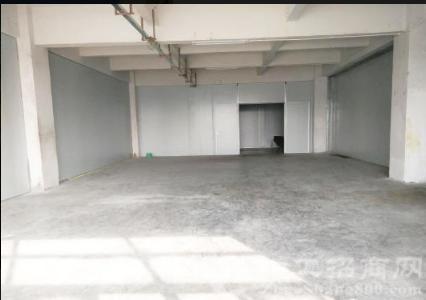 望牛墩洪梅附近标准厂房仓库出租,可分租