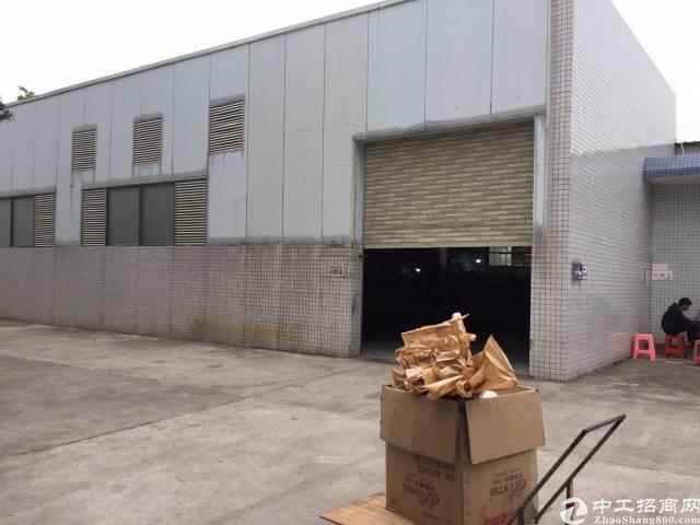 大岭山镇新空出单一层钢构厂房900平方