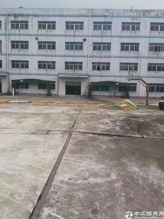 惠阳区沙田镇独门独院超大空地可办环评厂房出租