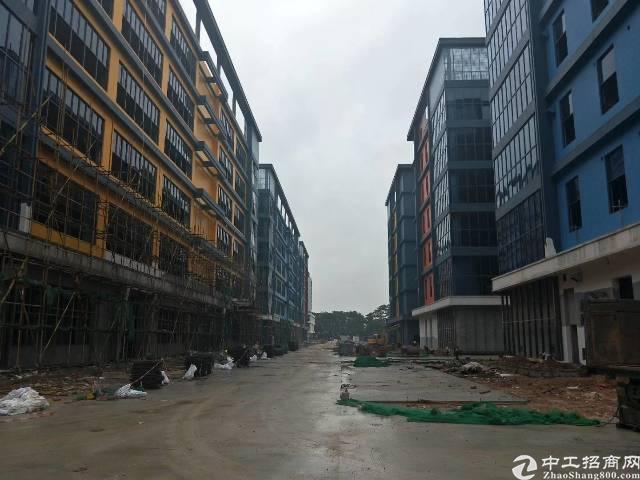 陈江镇新出带国有土地证标准厂房