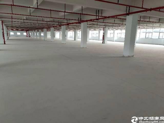虎门原房东标准厂房总面积8600平可分组工业用地带环保批文-图2