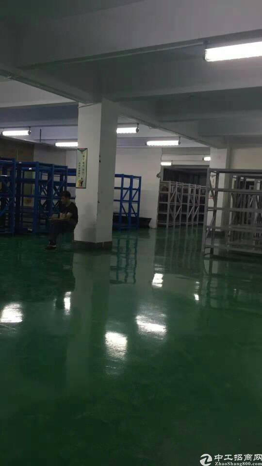 西乡九围一路超靓厂房带装修1380平方租金25元
