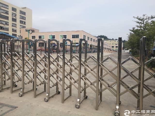 凤岗金凤凰8000平米标准物流仓库厂房