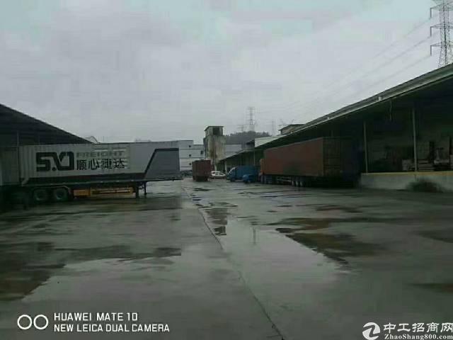 惠州惠阳新出物流仓11000平出租带现成卸货平台-图4
