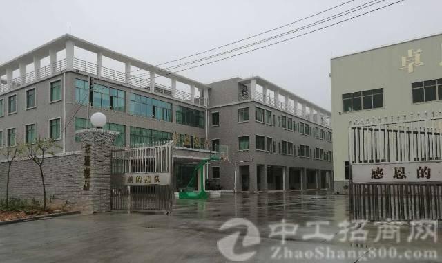 东莞沙田占地19800m²优质厂房出售