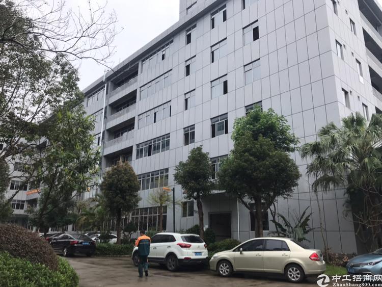 仲恺高新区海关附近大型工业区厂房分租