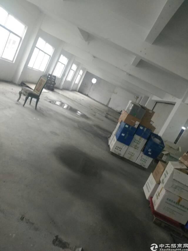 图片真实有效,虎门镇沙角社区实业客转租