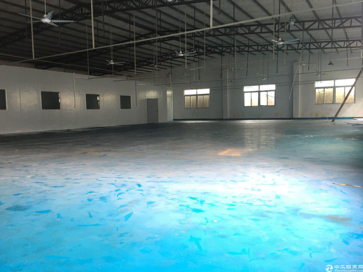 仲恺高新区原房东单一层滴水6.5米钢构厂房现成装修办公室
