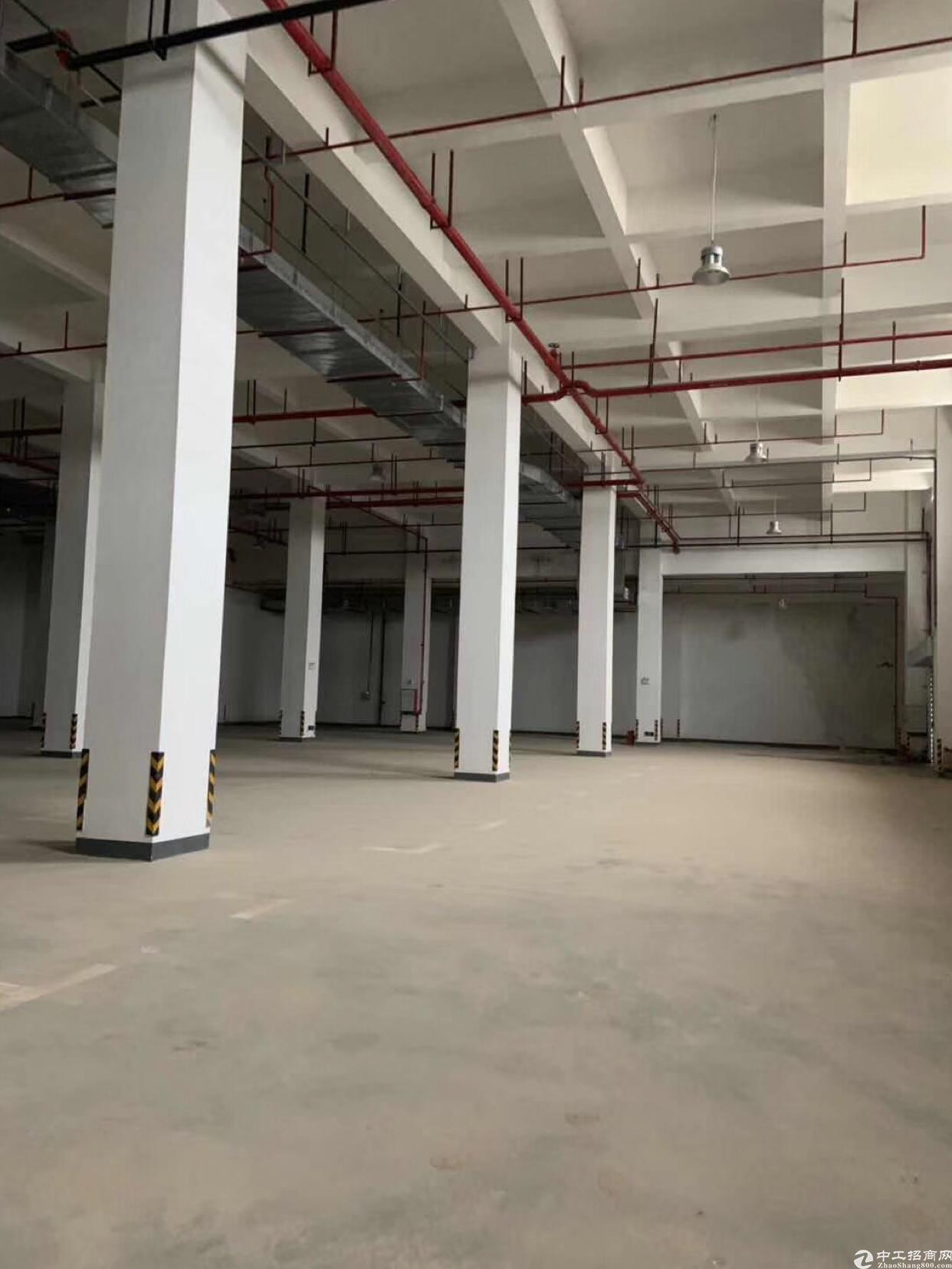清溪国际物流仓库20000平米高10米带丙二类消防有卸货平台