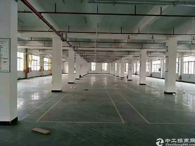 仲恺高新区新出原房东10元厂房楼上4000平米,无公摊
