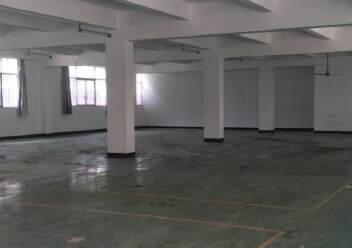 光明玉律独院厂房出租图片3