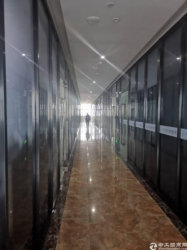 黄埔东路电商园小面积写字楼招租100平