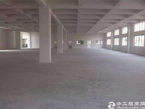 广州市白云区独门独院标准厂房出租,可环评适合各种行业