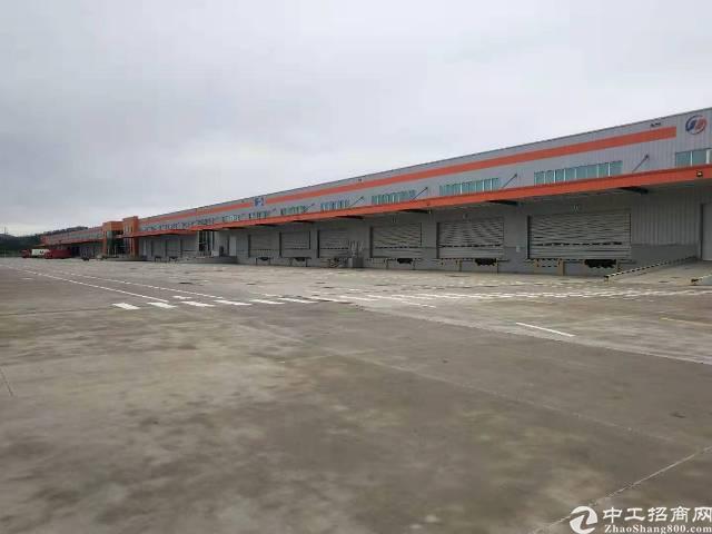 惠州大型物流园带高台,丙二类消防,原房东出租