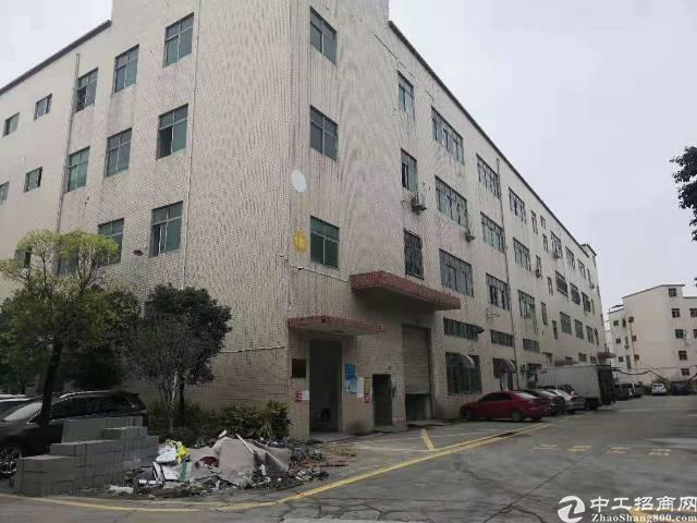 沙井镇大王山楼上800平方带豪华装修厂房不需要转让费