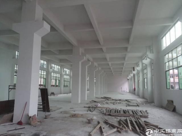 原房东独院厂房4800平方,宿舍办公室500平方