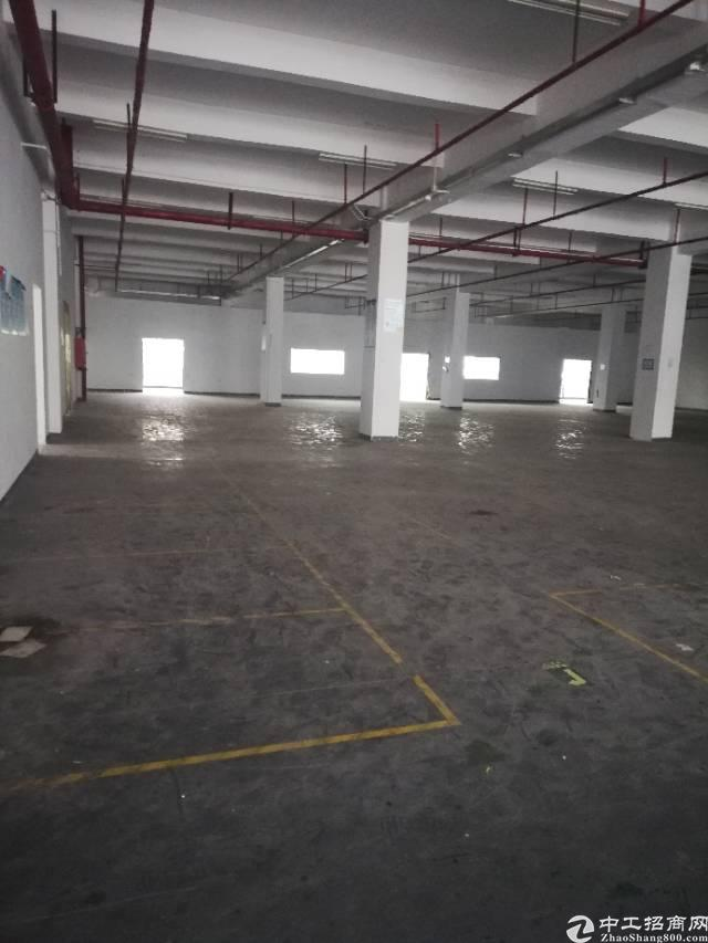 龙岗宝龙工业区花园式标准仓库厂房1850平方出租