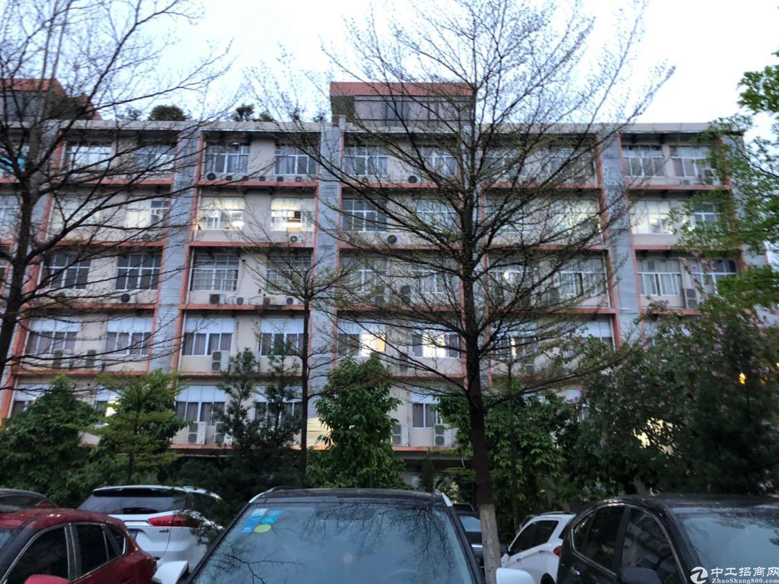 天河区珠吉路附近写字楼招租,形象好,交通方便,有大型停车场,