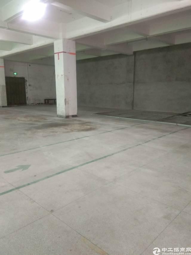 新出原房东一楼480平厂房仓库出租