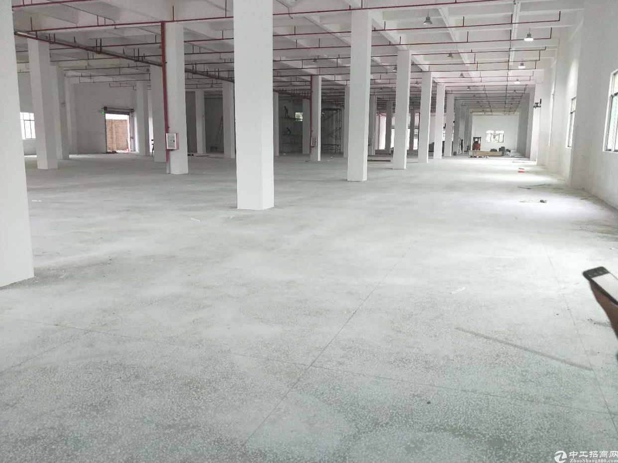 园洲镇原房东标准厂房一万二平方低价出租-图2
