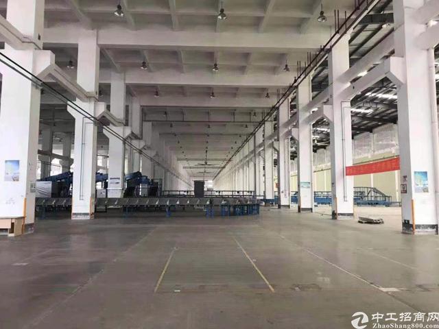 深圳70000平重工业钢构物流带卸货平台做空地80000平-图2