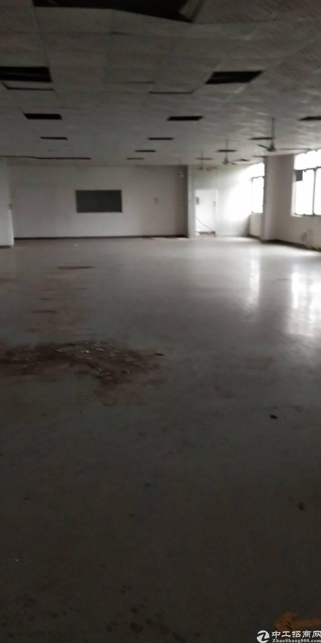 龙岗五联标准厂房650平方