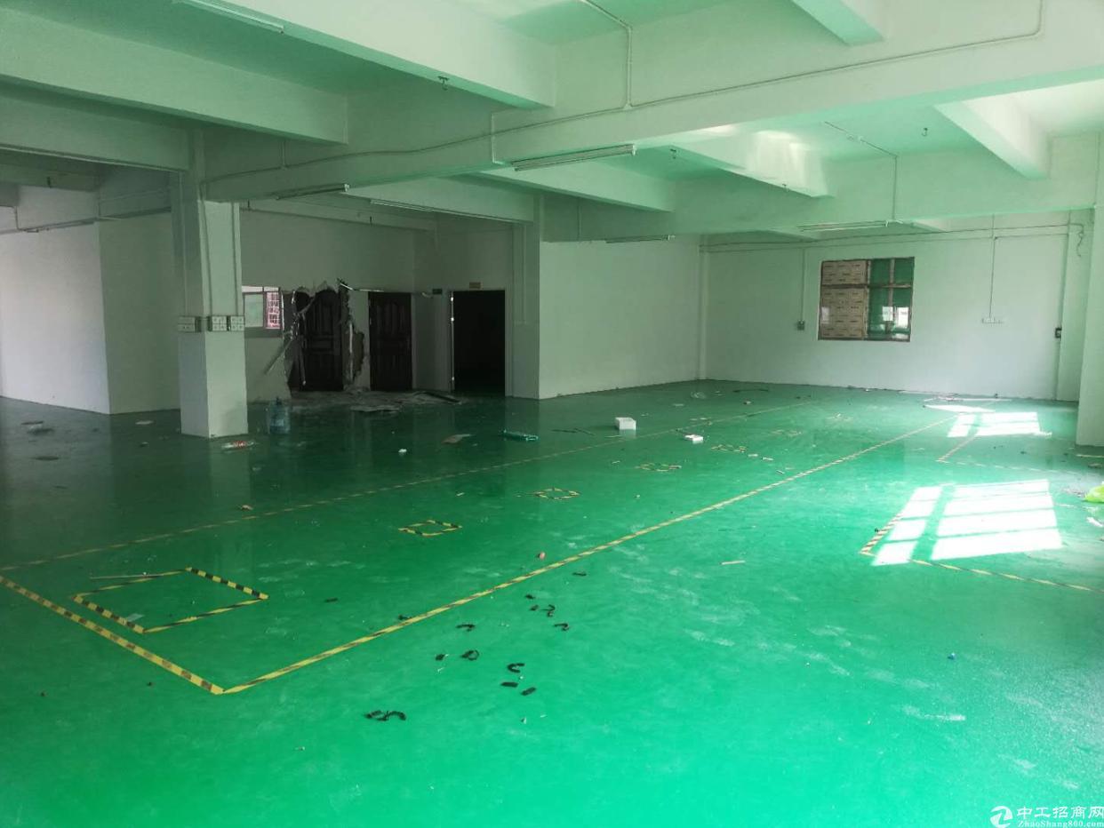 原房东分租,二楼1200平方,全新装修地坪漆,带办公室