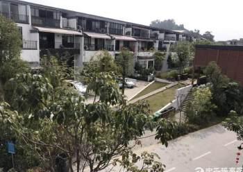 黄埔渔珠稀有独栋别墅、1000平带豪华装修及阳台图片6