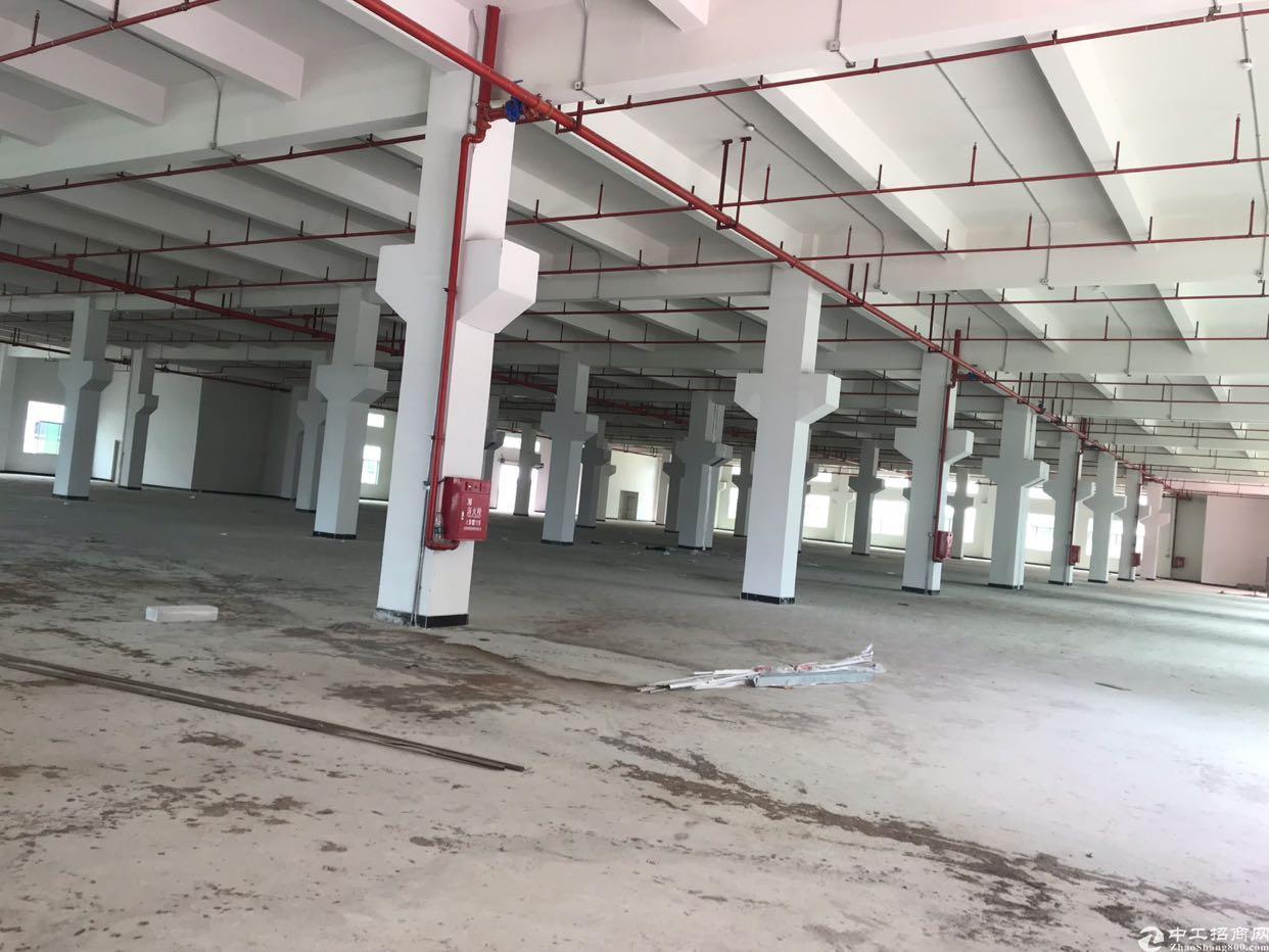 清溪临时仓库的独立25000带消防喷淋2部3吨双开门电梯