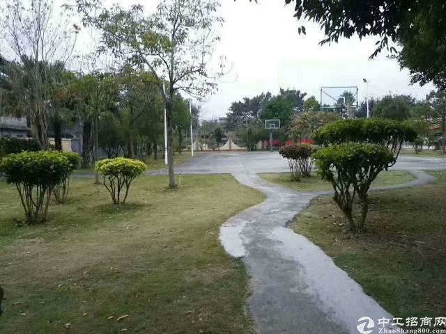 惠州新出幼儿园出租