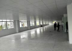 天河区奥体路附近2000平办公室写字楼招租