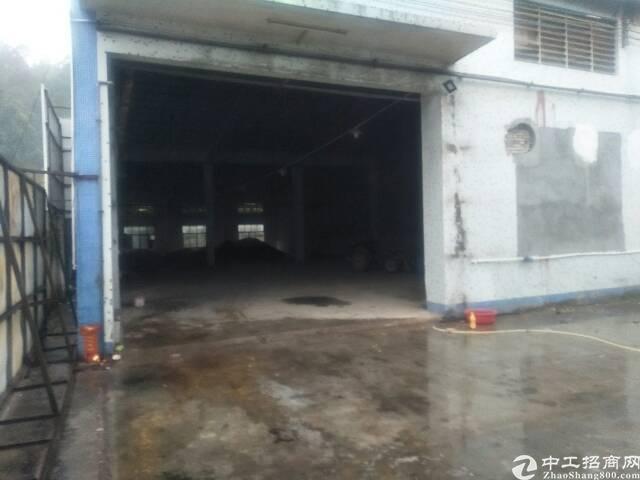 南沙大岗独院厂房1000平方-图3