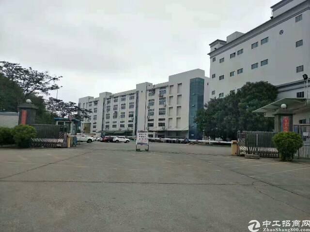 龙岗红本独院高大上标准厂房可分租