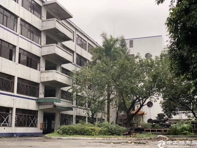 盐田乐群小学附近2万平独院厂房出租