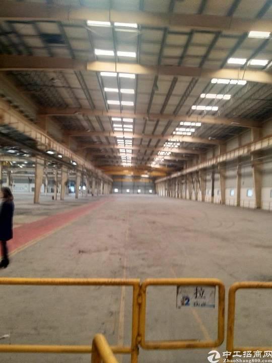 黄埔开发区新出高台仓库15000平米物流仓库出租