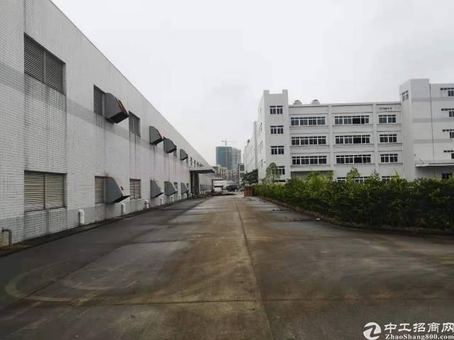 马安镇新出独栋钢构厂房招租