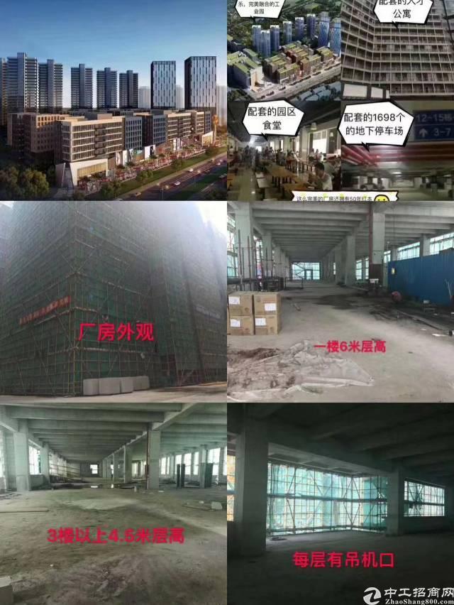 东莞常平全新厂房来了! 1、有国有证红本,产权五