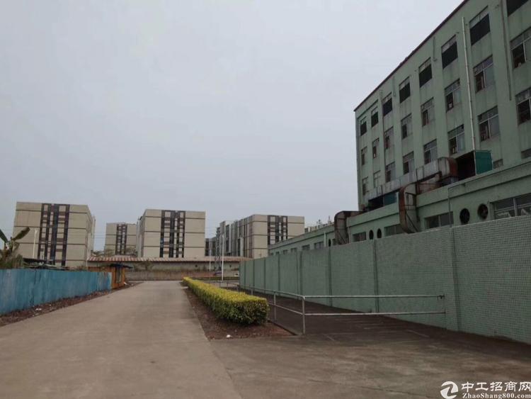 出租石基大龙金龙路附近大型钢构6000平米,可分租,有正可办-图4