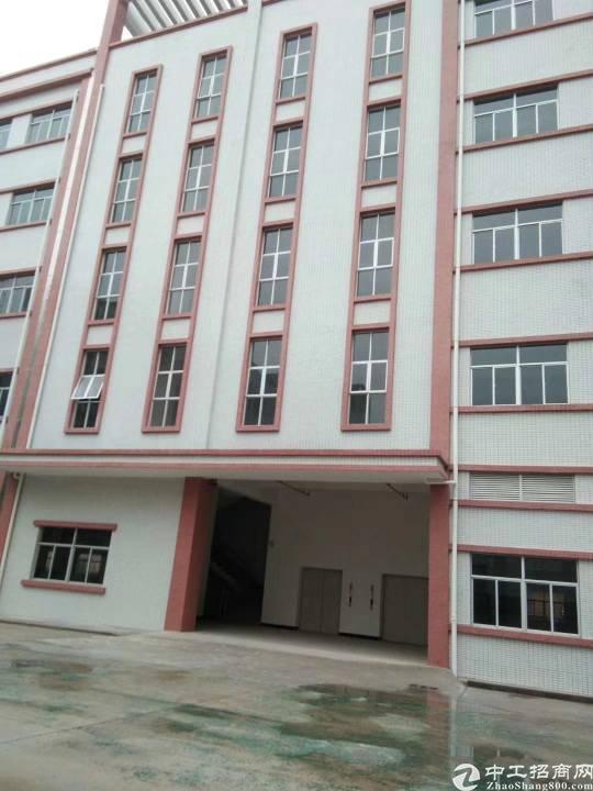惠州惠城区金龙大道旁全新厂房招租