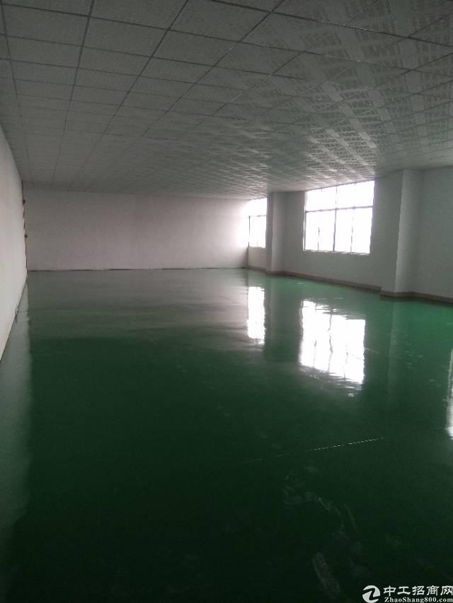 塘厦新建厂房楼上隔好400平带地坪漆