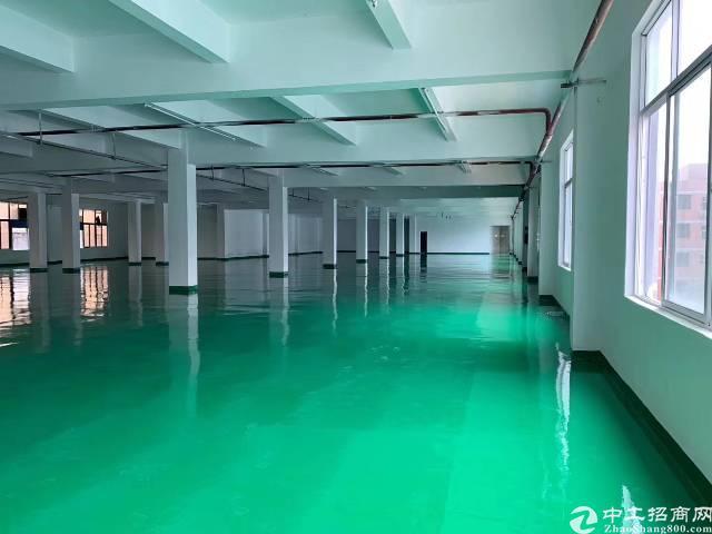 平湖靠华南城全新地坪漆厂房1,2楼3000平方出租