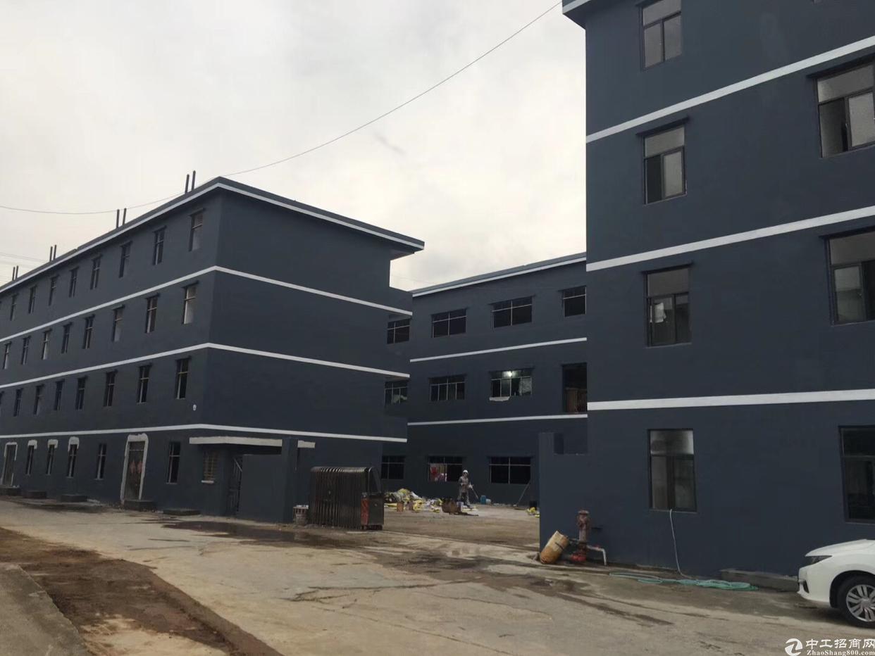 仲恺全新独院标准厂房1-3层红本厂房