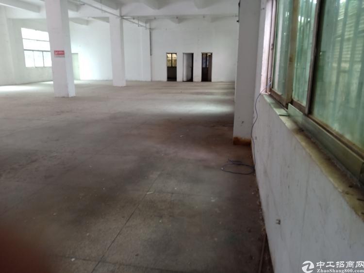 平湖山厦附近新出一楼600平标准厂房招租