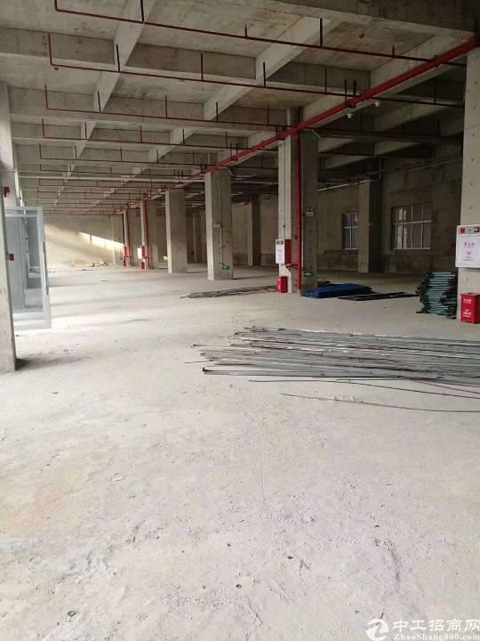 东莞常平全新厂房来了! 1、有国有证红本,产权五-图3
