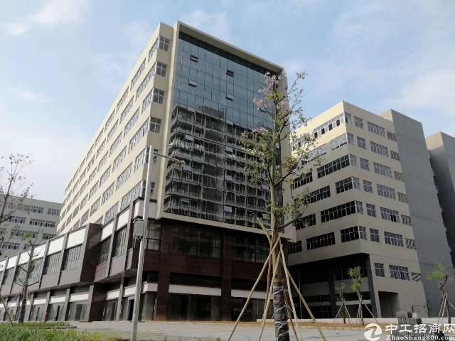 东莞常平全新厂房来了! 1、有国有证红本,产权五-图5