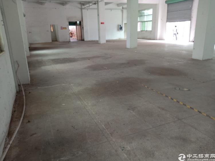 平湖山厦附近新出一楼600平标准厂房招租-图2