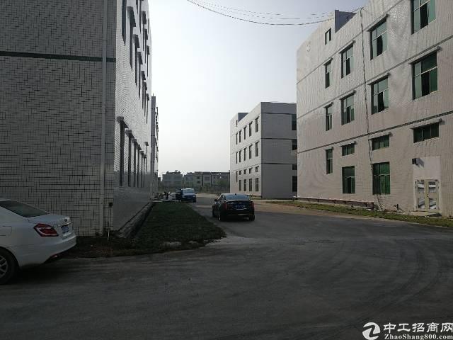 惠州惠城区马安镇新出工业园42500平厂房出租