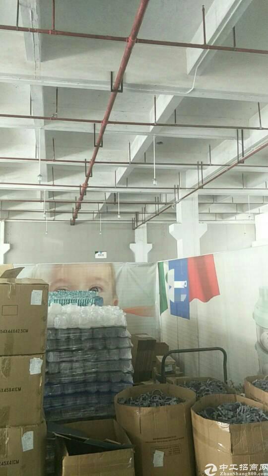 东莞市道滘镇新出标准一楼6.8米带牛角厂房