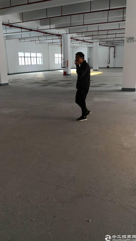 平湖25块钱独门独院厂房35000平方出租